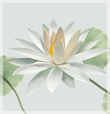 home_yoga_lotus2